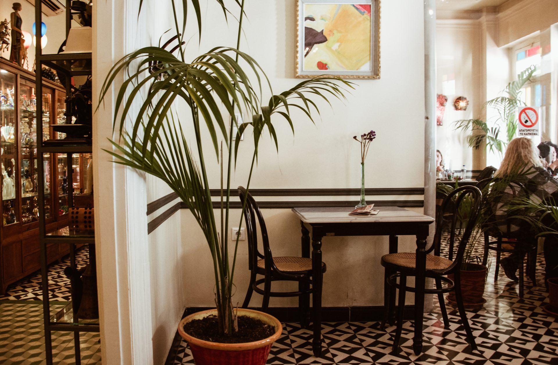 Cafe Palermo, Thessaloniki