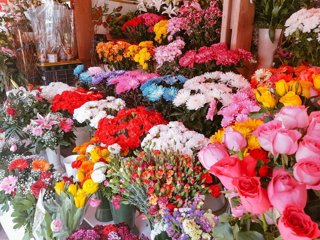 Flowers in Thessaloniki