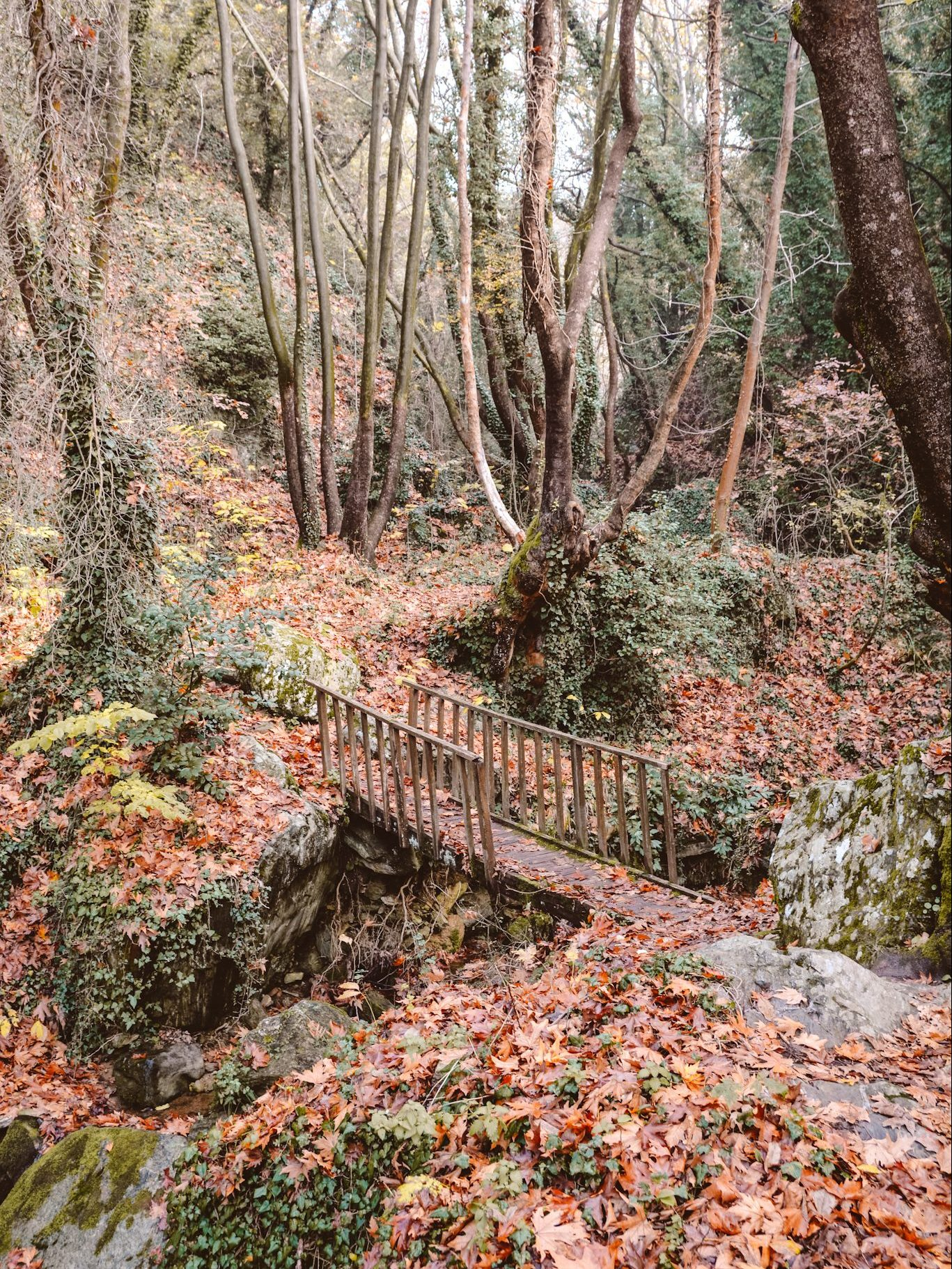 Exploring Centaur's Path in Pelion near Volos