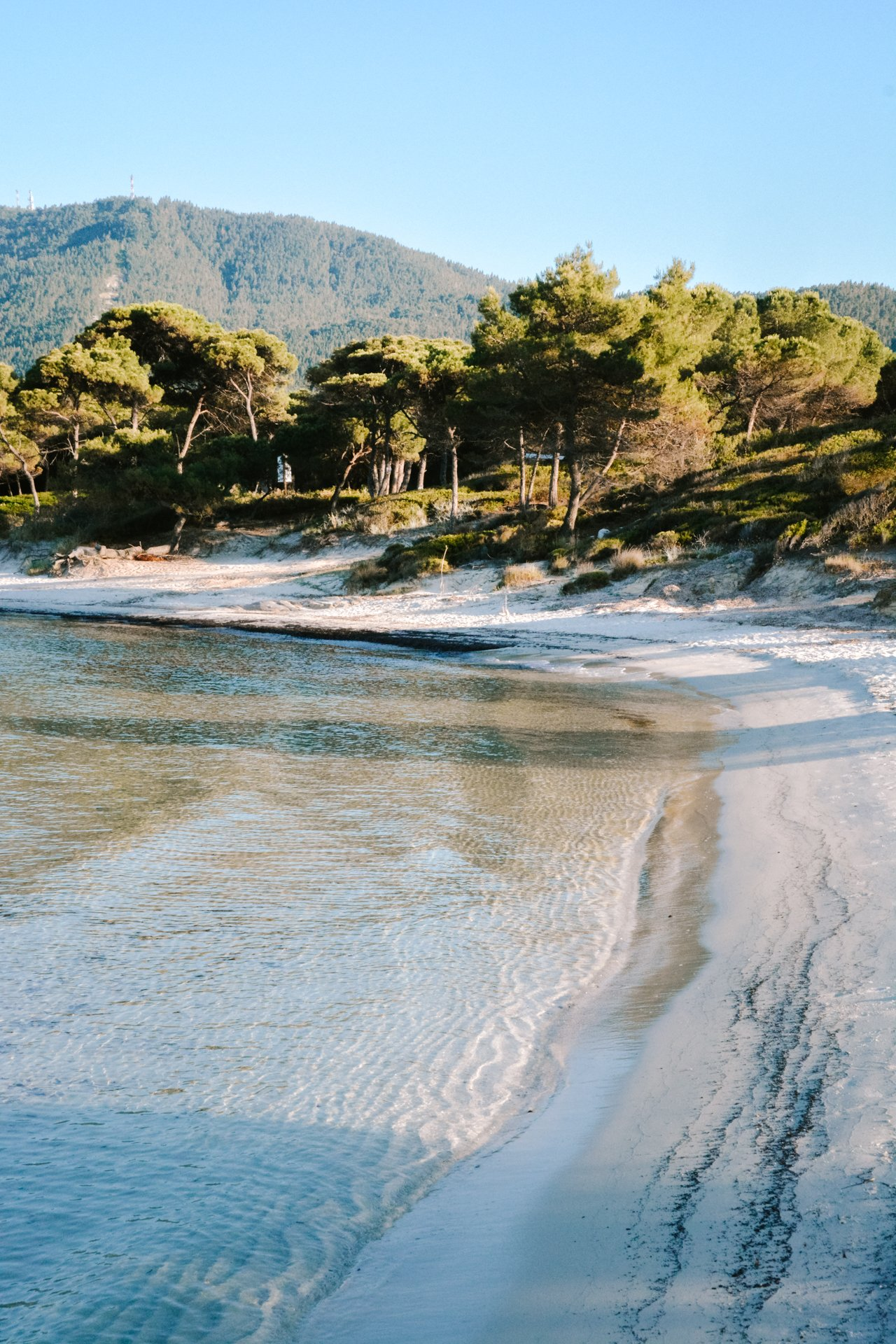 Karidi Beach in Sithonia Halkidiki-2